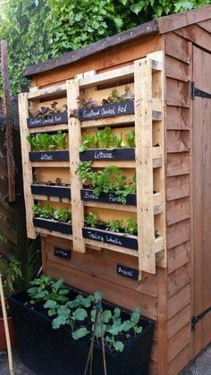 Vertical garden made with palette – Garden Types - How to Make Gardening Vertical Garden Design, Herb Garden Design, Vertical Gardens, Vegetable Garden Design, Back Gardens, Outdoor Gardens, Garden Art, Vegetable Gardening, Gardening Hacks