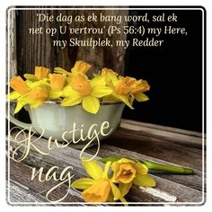 Good Night Blessings, Goeie Nag, Day Wishes, Afrikaans, Table Decorations, Sleep Tight, Qoutes, Scrapbooking, Messages