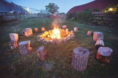 Fire pit with stump seating