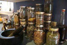 Harvesting and Preserving Herbs — Dan330