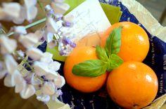 Una sorpresa per gli ospiti di oggi che volevano assolutamente provare le buonissime arance che ci sono in Italia. / A surprise for today's guests who absolutely wanted to try tasty Italian oranges.