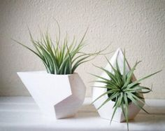 Geometric teardrop air plant holder gift set by RedwoodStoneworks