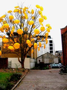 'Bloom' umbrella installation art by Sam Spencer