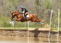 Julie Pate and Catch Me If You Can- love this horse's expression as they take on the water