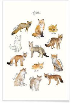 Foxes en Affiche premium par Amy Hamilton | JUNIQE