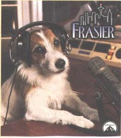 """Moose...also known as """"Eddie"""" from Frasier"""