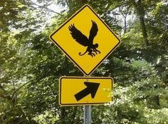 can you name this crazy road sign?