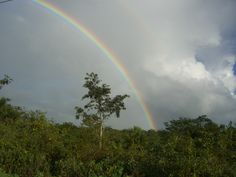 Double rainbow over the jungle, Yucatan, Mexico on the road to visit the Maya