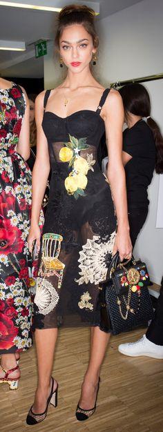 Dolce & Gabbana Ready To Wear Spring 2016