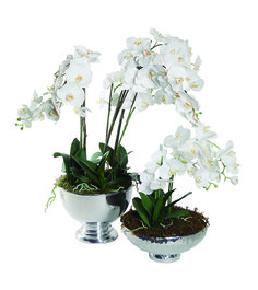 Orquídea Pewter en Atelier Central. Orquídea artificial con bowl de pewter. El bowl tiene una diámetro de 34 o 35 cm.