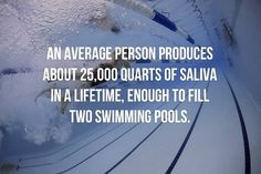 An average person produces about quartz of saliva in a lifetime, enough to fill two swimming pools. Random Science Facts, Average Person, Swimming Pools, Fill, Quartz, Swiming Pool, Pools