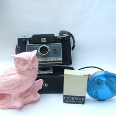 Polaroid land camera with timer and blue flash
