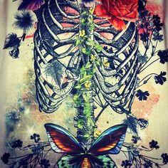 Anatomical <3