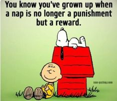 Charles Schulz on dogs. Snoopy Pictures, Minion Pictures, Minions Pics, Funny Pictures, Work Quotes, Cute Quotes, Funny Quotes, Man Quotes, Quotable Quotes