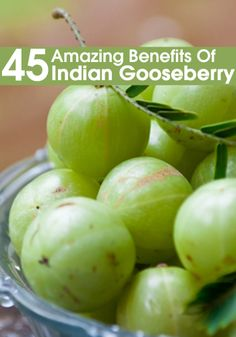 45 Amazing Benefits Of Indian Gooseberry / Amla