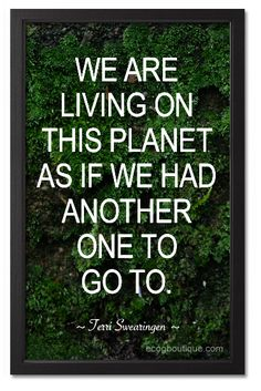 I thought that this quote was a very good way to explain how humans treat nature.  It seems as though all we do is destroy nature in order to achieve our own personal goals, and we act as though we will not face the repercussions of our actions.  We mistreat the resources given to us by the planet, and we do not believe that we will have to pay the price for it.
