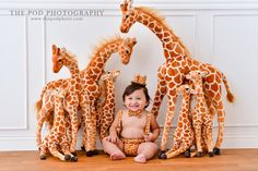 King of Giraffes First Birthday Photos