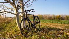 Merre érdemes elindulni biciklitúrázni a Tisza-tó környékén? A jó idő meghozta a felszáradt utakat, a kedvet és elmentünk egy izgalmas bicikli túrára. Következik 5 tipp tanyatúrákhoz a Tisza-tó körül.  #welovetiszato #Tisza-tó #kirándulás #belfölditurizmus #Tisza #túra #biciklitúra #bicajtúra