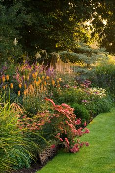 Love this bed of flowers.