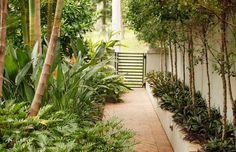 Tropical Garden, Brisbane, Australia