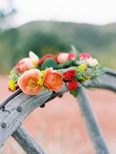 Flowers by Lace and Lilies, bright and bold flower crown/halo, rocky  mountain wedding, peony, garden rose, ranunculus