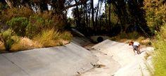 Concrete waves in Cbad San Diego. #jellyskateboards #jellyboards #sd #skateboards