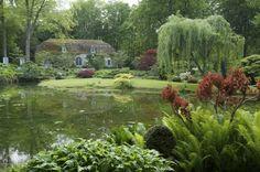 Parc de Courances - Thomas Dupaigne- Photographe de jardins