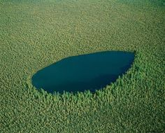 Россия, Сибирь. Лесное озеро.
