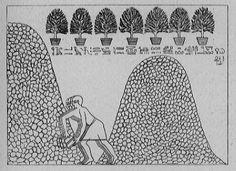 Pays de Punt - expédition envoyée par Hatchepsout au Pays de Pount en l'an 8/9, « selon les instructions du maître des dieux Amon, pour lui rapporter les merveilles de tout le pays et principalement prélever des « arbres à ântyw (ana-sycamore) pour la Maison d'Amon », destinés à être plantés « dans le jardin des deux côtés de son temple.