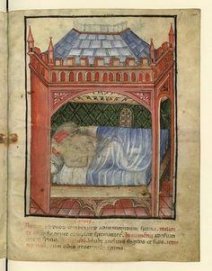 Tacuinum of Paris.  Tacuinum Sanitatis, 15th century (BNF Nouvelle acquisition latine 1673) fol.100