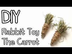 How To Make Homemade Rabbit Toy The Carrot DIY - YouTube