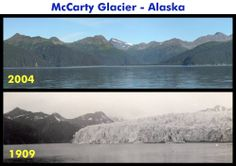 Comparison photos of McCarty Glacier in Kenai Fjords National Park, Alaska. McCarty glacier retreated ~20 km between the period these two photos were taken and is not visible in the 2004 photo. Prior to this, McCarty achieved its maximum known extent circa 1850 approximately 0.5 km from its position in 1909 and was relatively stable at that time.  If you want to see why, click on the photo.