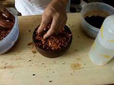 Hacer fibra de coco en casa Gratis - YouTube