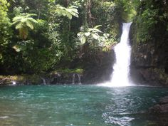 Waterfall in Savaii, Western Samoa