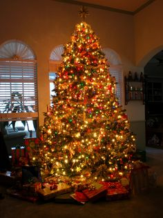 11. Kerst in Amerika lijkt mij echt helemaal het einde!! Even een jaartje Sinterklaas inruilen voor Santa Claus en heeel lang kunnen genieten van de verlichte huizen, een supergrote kerstboom versieren, een 'gingerbread house' maken en cadeautjes geven (en krijgen, haha)! :D