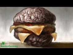 Alzheimer's Disease: Grain Brain or Meathead? Grain consumption appears strongly protective against Alzheimer's disease, whereas animal fat intake has been linked to dementia risk. Volume 20, Number 1. Released July 2, 2014.