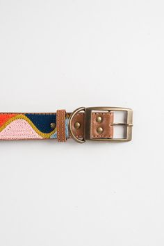 Multi Color Wave - Leather Embroidered Dog Collar by FILLYDOG