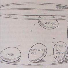 Drop an egg into a glass or bowl of water to tell if it's still fresh. | 17…