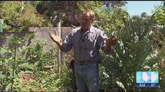 Dave Owens, the Garden Guy, gives us some great tips to getting rid of a tree stump.