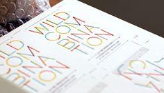 Wild Combination identity by Kelli Anderson #identity #branding #typography
