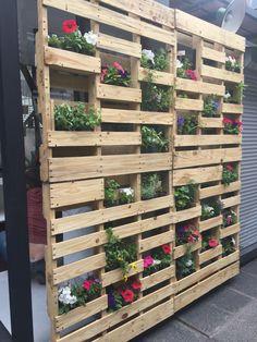 Tablero con plantas