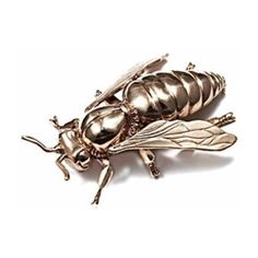 Bernard Delettrez Bee Brooch ($678) ❤ liked on Polyvore featuring jewelry, brooches, gold, honey bee jewelry, gold tone jewelry, bee jewelry, bumble bee jewelry and bee brooch