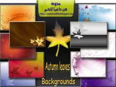 Free Autumn leaves backgrounds