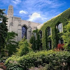 Northwestern University   41 Scenic College Campuses That Were Made For Instagram