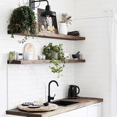 This little kitchen at @the_bower_byron_bay though?! .  @liammolloy . #kitchen #kitchendesign #shelves #woodshelves #interiorinspo #smallkitchen #kitchenette