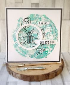 Tracy Evans: Beetle Card
