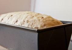 Oatmeal-Sunflower Bread / how to knead in a bread machine but bake in a conventional oven by Salad in a Jar, via Flickr