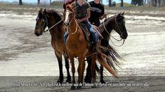 Olivia Adriaco a dit « Si le chien est le meilleur ami de l'homme, le cheval est sans doute son meilleur allié ».