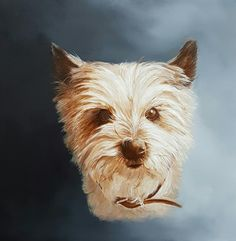 'Saartje', portrait of a cairn terrier.  Painted by Anne-Fieke Later