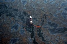 5 Years After BP Oil Spill, Effects Linger And Recovery Is Slow - NPR #BP, #Oil, #Spill, #Business